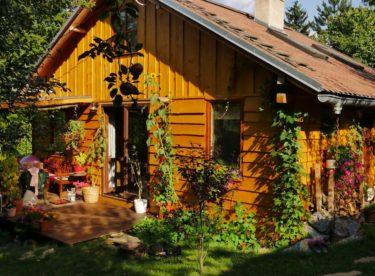 Žena si postavila přírodní dům za 600 000 Kč. Jak se v něm žije?