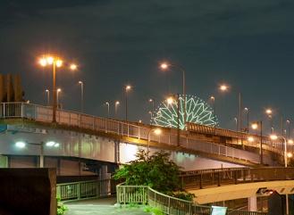 Problém: Přesvícená města. Světlem v noci trpí lidé i příroda