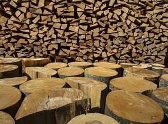 V Rakousku budou vyrábět elektřinu spalováním dřeva. Mají ho nadbytek