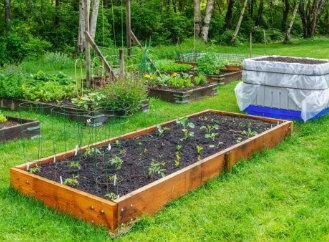 Přírodní zahrada – sedm základních rad, jak na to