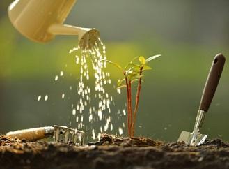 10 originálních tipů pro zahradu: Netradiční zahradní nářadí a pomůcky