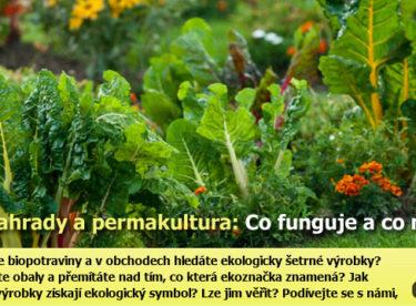 Praktické zkušenosti z permakulturní zahrady: Co se osvědčilo a co naopak nefunguje?