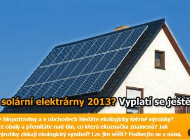 Má ještě investice do solární elektrárny reálnou návratnost?