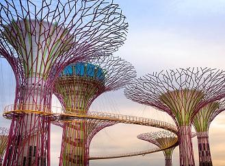 """Procházka v korunách solárních """"superstromů"""" láká návštěvníky Singapuru"""