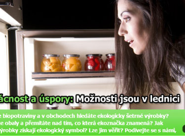 Rady pro úspory energie v kuchyni: Zaměřte se na chladničku!