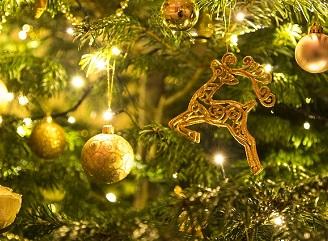 Vánoční dekorace – víte, kolik prosvítíte?