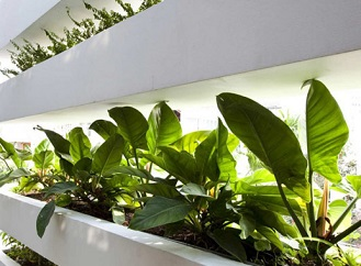 Netradiční zelená fasáda z Vietnamu zaujme zevnitř i zvenčí