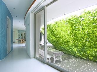 Zelená clona z popínavých rostlin ochrání soukromí v domě i na terase