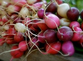 I zeleninu můžete pěstovat na balkóně. Zkuste rajčata, ředkvičky nebo i brambory