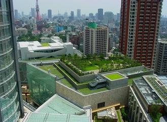 Zelené střechy – visuté zahrady i estetická izolace