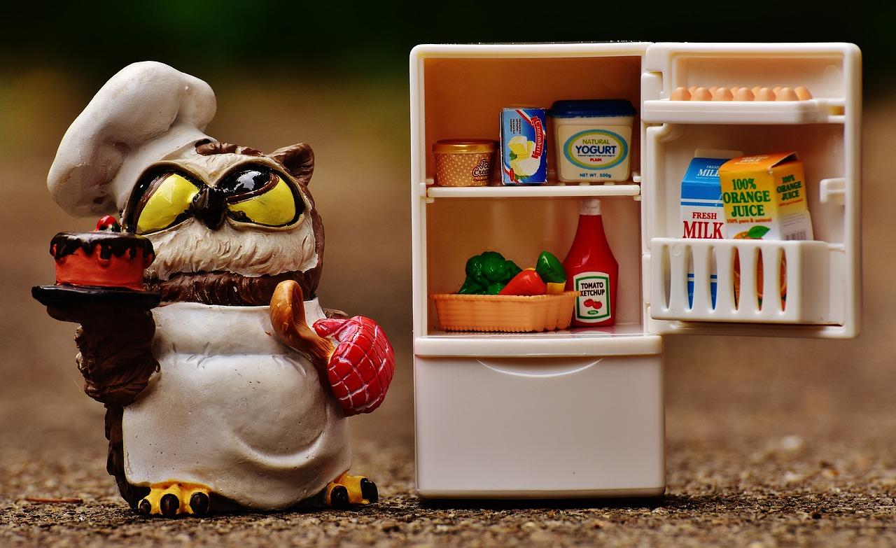 Jak poznat a vybrat úspornou lednici?