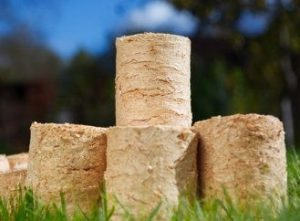 Vytápění biomasou. Na kolik vyjde? Vyplatí se?