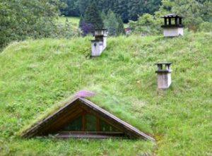 Zelené střechy v Česku zažívají boom, táhnou jej hlavně soukromí investoři