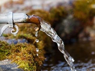 Spotřeba vody v létě roste. Jak jí neplýtvat doma ani na zahradě?