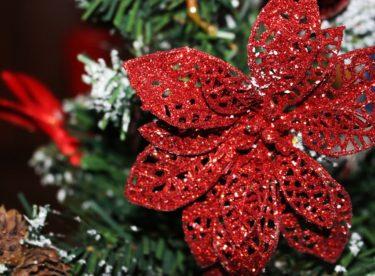 6 tipů, jak mít letos šetrnější Vánoce