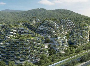 Podívejte se, jak mohou vypadat zelená města budoucnosti