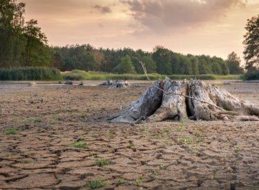 Podle ČHMÚ zima nepomohla a sucho bude nejspíš pokračovat