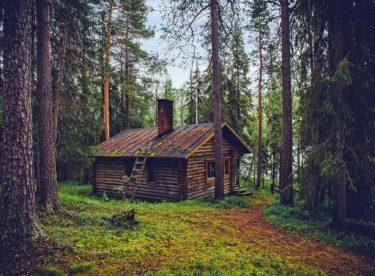 Výhody a nevýhody staveb z masivního dřeva