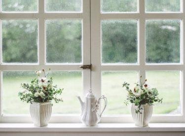 Plastová nebo dřevěná? Jak na výběr oken