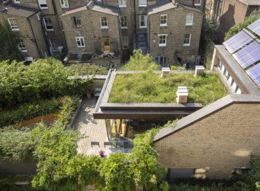 Jak na zelenou střechu krok za krokem