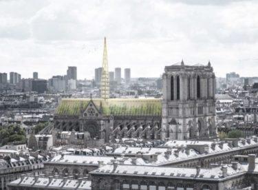 Jak opravit katedrálu Notre Dame? Třeba na skleník a včelín