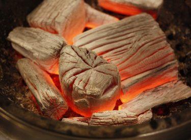 Jak si doma vyrobit dřevěné uhlí – biouhel?