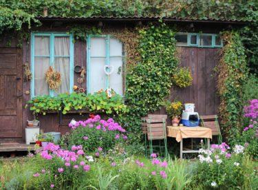 Sedm základních rad, jak na přírodní a živou zahradu