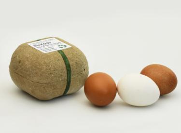 Revoluční obal na vejce – vyhodíte ho a vyrostou z něj květiny
