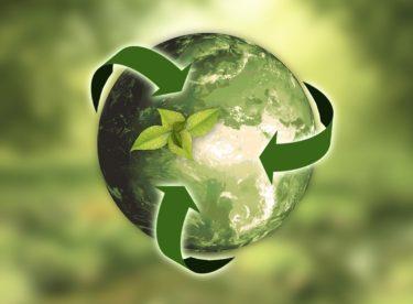 Cirkulární ekonomika – řešení pro udržitelnou společnost