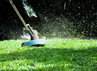 3 jarní práce, díky kterým budete mít na zahradě anglický trávník