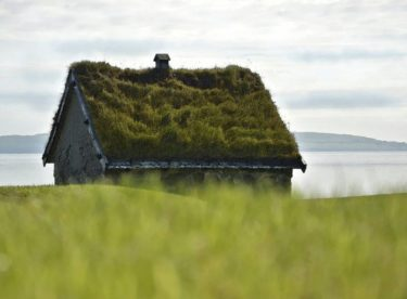 """Zelené střechy pomáhají v boji se suchem. Novostavba s plochou střechou bez zeleně je """"zločin""""."""