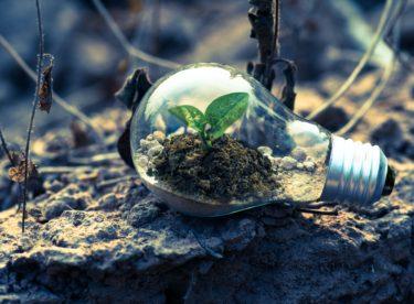 Záleží vám na planetě Zemi? Využívejte zelenou elektřinu. Nic moc navíc to nestojí.