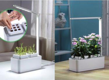 Osvětlení pro rostliny – čím a jak přisvětlovat?