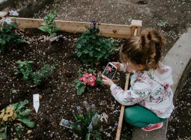 Nadchněte své děti pro zahradničení. Poradíme jak!