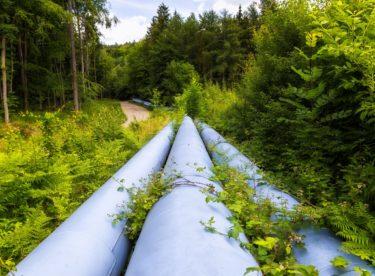 Zelený plyn s kompenzacemi emisí CO2 domácnostem jako první nabízí energetických startup bezDodavatele
