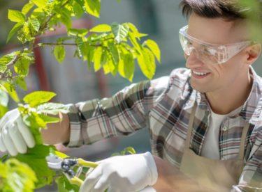 Využití ochranných pomůcek na zahradě