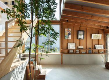 Japonský dům, v jehož srdci roste strom