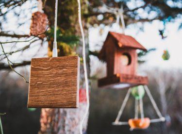 Dřevěná nabíječka, která myslí na přírodu