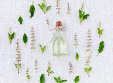 Léčivé bylinky ze zahrádky v kosmetice