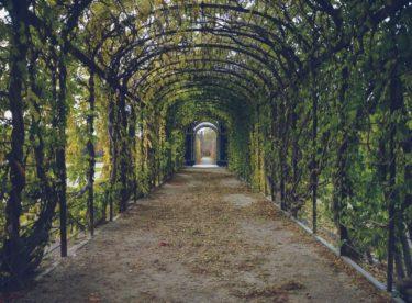 Vytvořte si zahradní sezení ze dřeva či z umělého ratanu