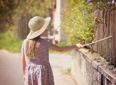 Na co myslet, když chcete stavět plot?