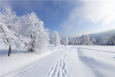 Tepelné čerpadlo vzduch/voda si sčeskou zimou poradí