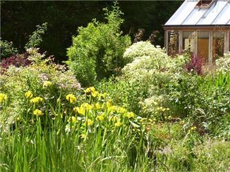 Druhová rozmanitost je předpokladem přírodní zahrady