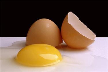 Slepice mají na ekofarmách mnohem lepší podmínky kživotu, což se pozitivně podepisuje ina kvalitě vajec