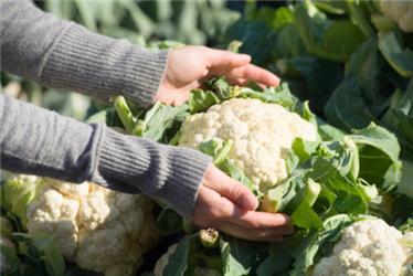 Biopotraviny můžete nakupovat také na farmářských trzích