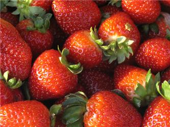 Jahody jsou zdravé aplné vitamínů