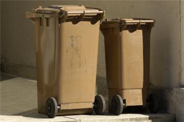 Pokud nechcete kompostovat, vyhazujte bioodpad do speciálních hnědých popelnic. Pomalu se začínají objevovat ivčeských ulicích