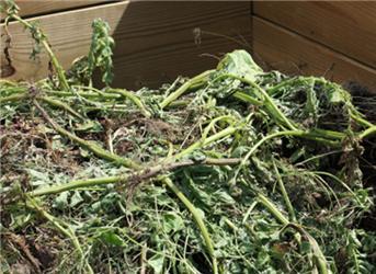 Kompostovat můžeme na volné hromadě nebo vkompostéru