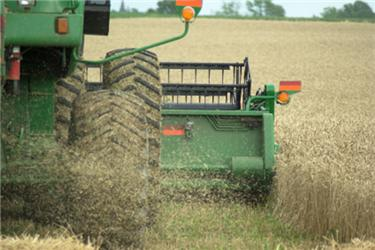 Politické strany na drobné zemědělce ibiopotraviny ve svých programech alespoň okrajově myslí