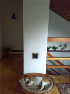 vyústění teplého vzduchu vpodkroví, strategické místo domácího hlídače